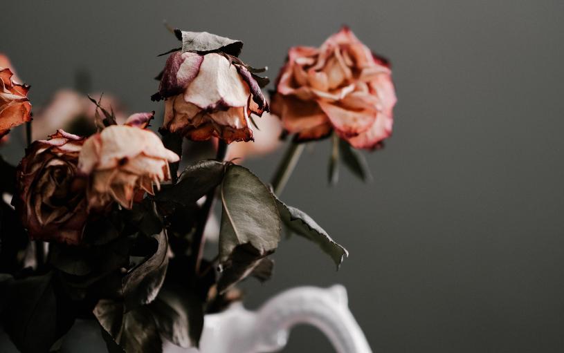 L'elaborazione del lutto e l'inadeguato apprendimento della gestione delle emozioni